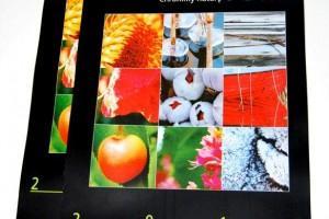 kalendarze-plakatowe-i-wieloplanszowe